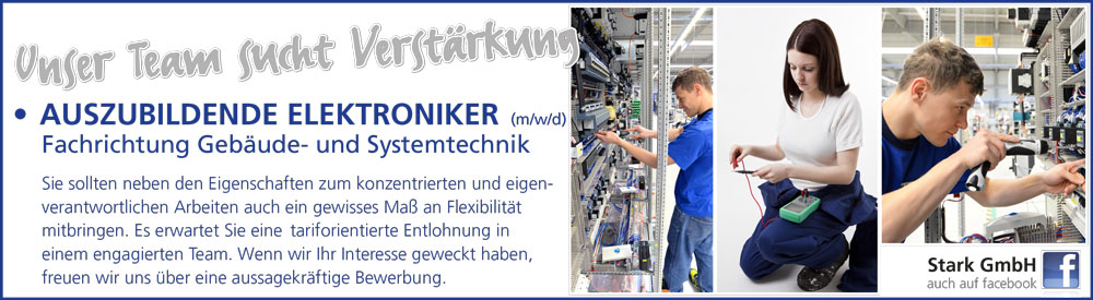 Stellenangebot Azubi Elektroniker in Recke